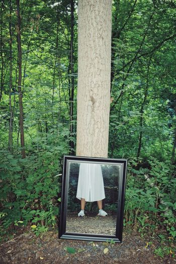 Low Section Of Girl Reflecting On Mirror In Forest