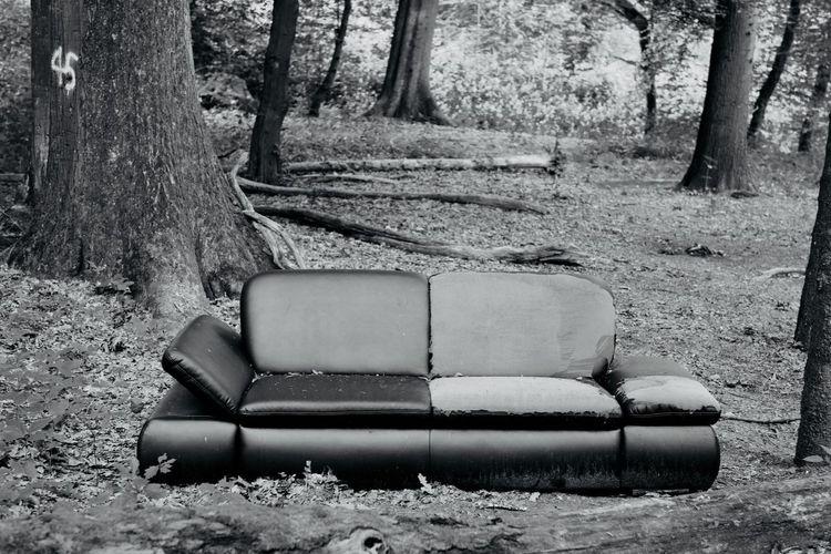 Relaxen im Wald