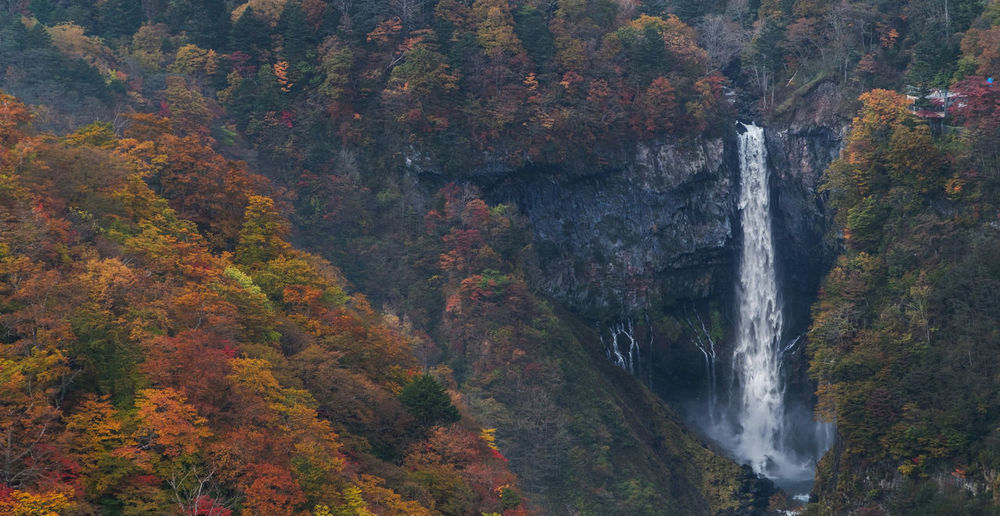 Idyllic shot of kegon falls during autumn