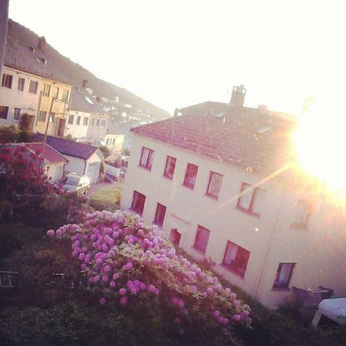 ThisView Kronstad Bergen