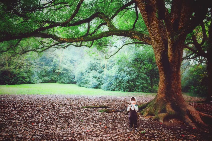 Outdoors EyeEm Best Shots Tree Childhood Lifestyles Green Color Beauty In Nature Branch People EyeEm Gallery OpenEdit Hanging Out