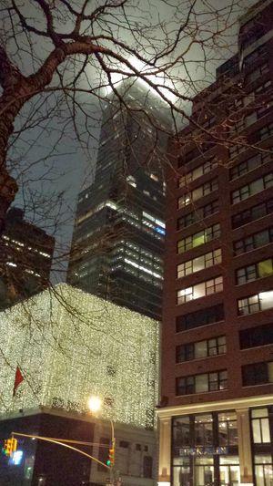 Everyday Lives Bloomingdales NYC
