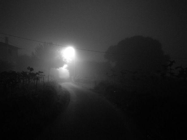 HuaweiP9 Mist Misty Monochrome Monochrome Photography Monochrome_life Morning Oo