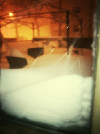 . My Bacc Yard ! , When iOpened The Door !