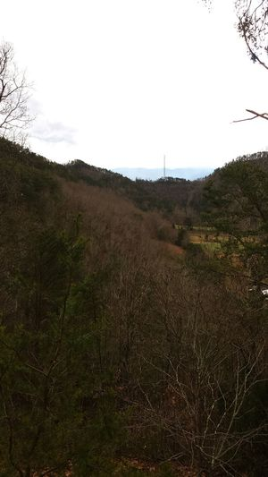 Outdoors Gaitlynburg Vacation From My Point Of View A Walk In The Woods Trees And Sky Landscape_photography SmokyMountains Mountaintop