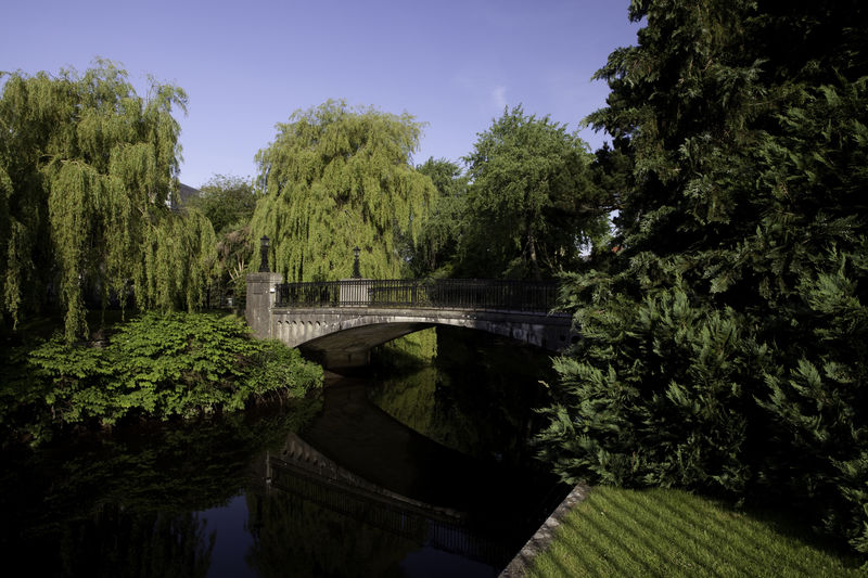 Architecture Bridge Built Structure Cork Cork City Day Footbridge Green Green Color Growth Ireland Lush Foliage Nature No People Outdoors Plant River Scenics Sky Tranquil Scene Tranquility Tree UCC UCC Campus Water