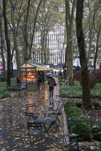 Bryantpark Bryant Park  Bryant Park NYC Tree Nature Outdoors Park Day Rain Rainy Days Christmas Village New York New York City