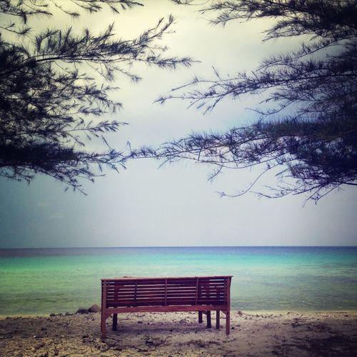 Beach Minimalist Bench Nature
