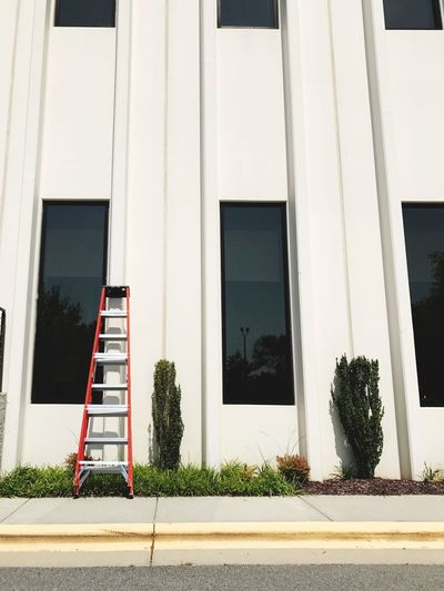EyeEm Selects Ladder leaning on office building. Architecture Building Exterior Built Structure Outdoors No People Day Ladder Office Building Repetition Backgrounds Geometric Shapes