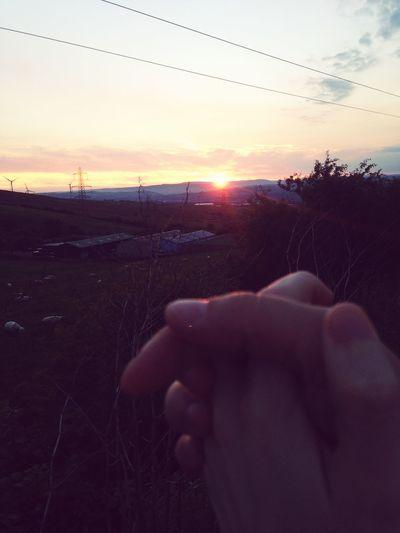 Holding Hands Love Sunset