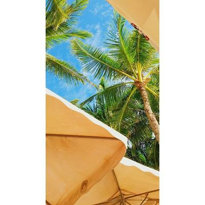 책 읽다가 노곤함에 잠들고 싶은 날 Sunbed Whitebeach Boracay Paradise 보라카이여행 보라카이 여행 여행스타그램 우정여행 @yyyyhana