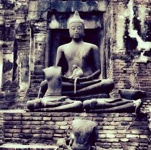 Male Likeness Statue Human Representation Sculpture Religion Buddha Buddha Image Buddha Statue Buddha Face Lopburi Thailand Spirituality Place Of Worship Idol No People Old Ruin Day Architecture Outdoors