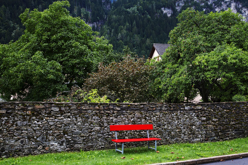 Red bench, Faido, Switzerland. Beauty In Nature Bench Day Grass Green Color Horizontal Lawn Nature No People Outdoors Quiet Red Bench Sitting Area Stone Wall Tranquility Tranquility Tree