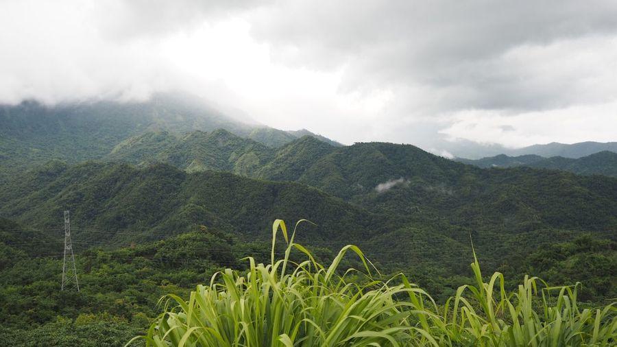 ภูเขา หมอก อากาศสดชื่น First Eyeem Photo