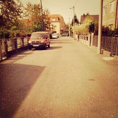 spring in my street :D