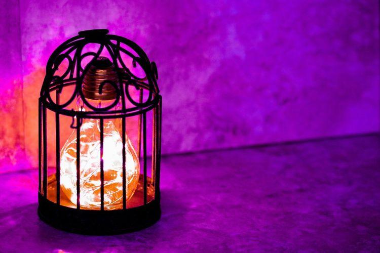 Caged lightbulb with purple haze Light Effects Bright Ideas Metal Cage Birdcage Illuminated Glowing Orange Lightbulb Haze Purple Indoors  No People Close-up Pink Color Illuminated Multi Colored