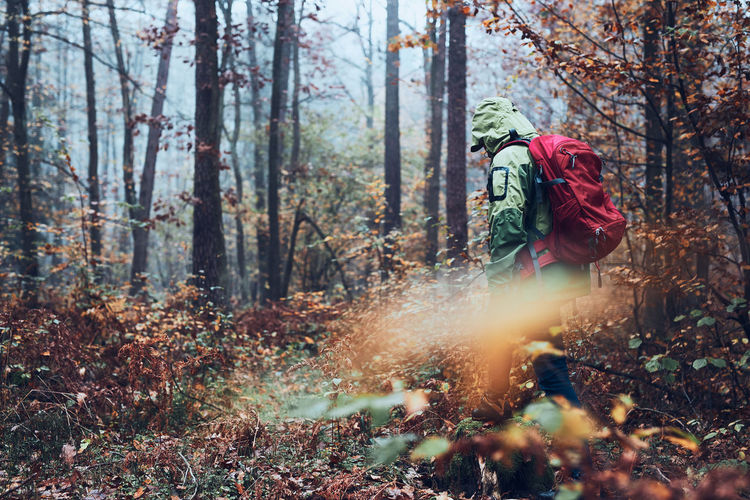 Woman with backpack wandering around a forest on autumn cold day