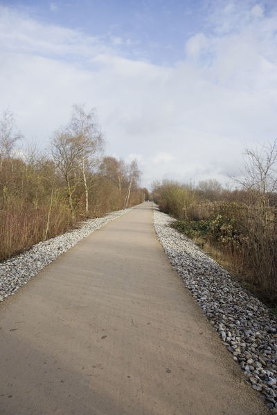 bikeway in winter - cycling tourism in germany Bikeway Cycleway Diminishing Perspective Dirt Road Erzbahntrasse Footpath Gelsenkirchen German Germany New NRW Path Road Route Ruhrgebiet Rural Scene Straight Tourism Tourist Attraction  Track Trail Travel Destinations Walkway Way Winter