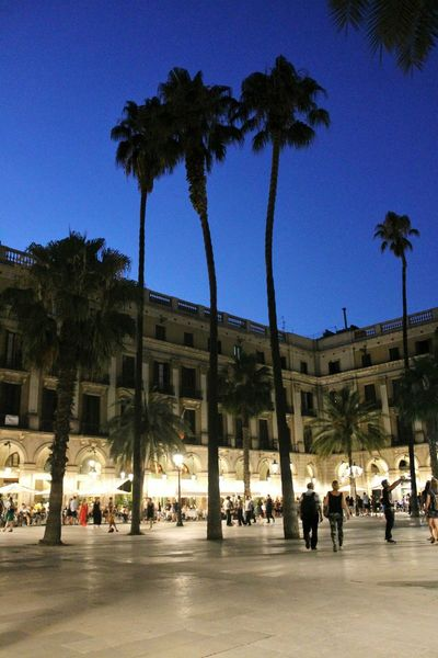 Plaza Real Barcelona Barcelonacity Streetphotography Tourism Lifestyles City Life Travel Cultures People Arts Culture And Entertainment Outdoors Travel Destinations Architecture_collection Architecture Palm Tree Night Night Lights Nightlife The Street Photographer - 2017 EyeEm Awards