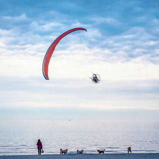 Kiteboarding Cloud - Sky Beach Outdoors Extreme Sports People Adventure Club Adventure Buddies Dog Check This Out Horizon Over Water My Year My View Peopleandplaces Istanbul Istanbulstreetphotography Outdoors Life Streetdreamsmag Finding New Frontiers Miles Away Long Goodbye