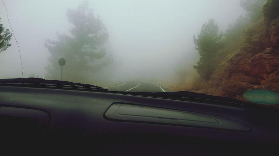 sis RISK Yol Rampa Dağ Yamaç Tree Fog Land Vehicle Car Interior Car Water Windshield Wet Torrential Rain