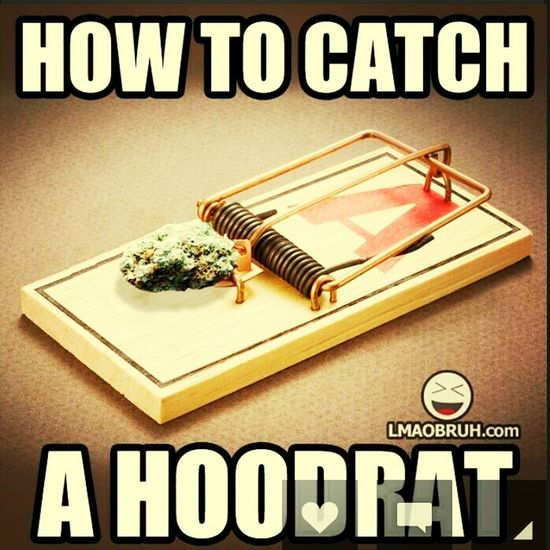 To Get The Hood Rats Out!