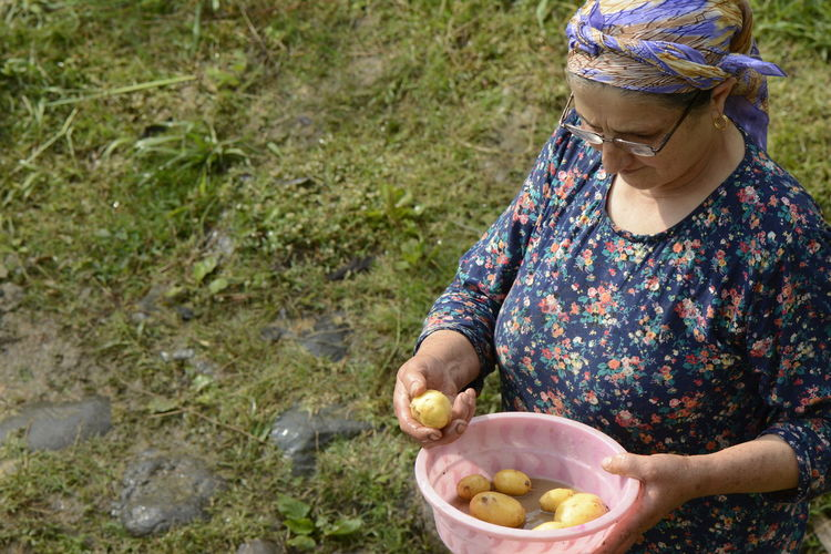 Woman holding potatoes in container on field