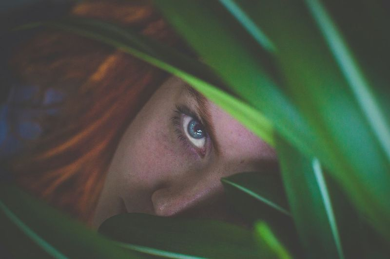 High Angle Portrait Of Young Woman By Plants