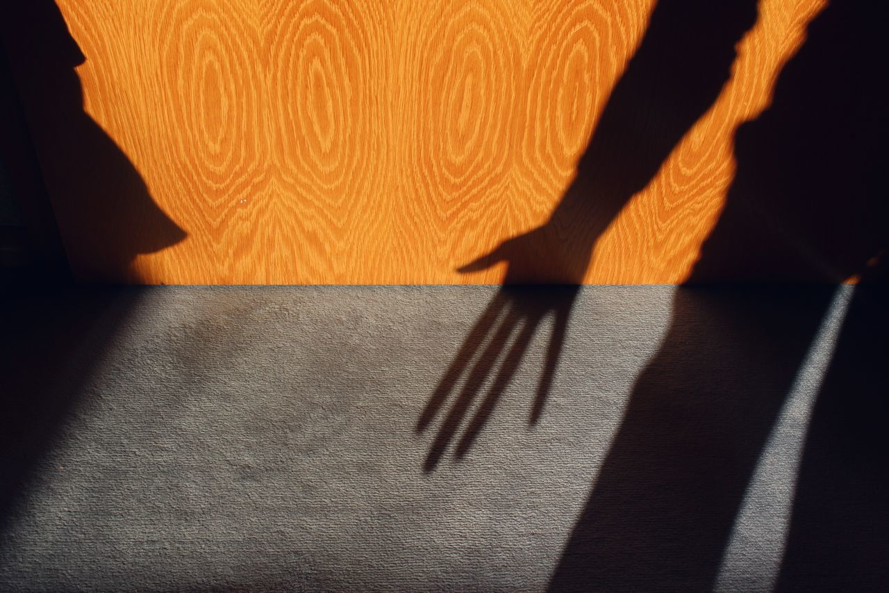 LOW SECTION OF PERSON ON SHADOW