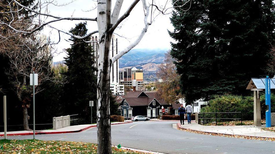 Fall on campus City University Campus Reno, NV Unr