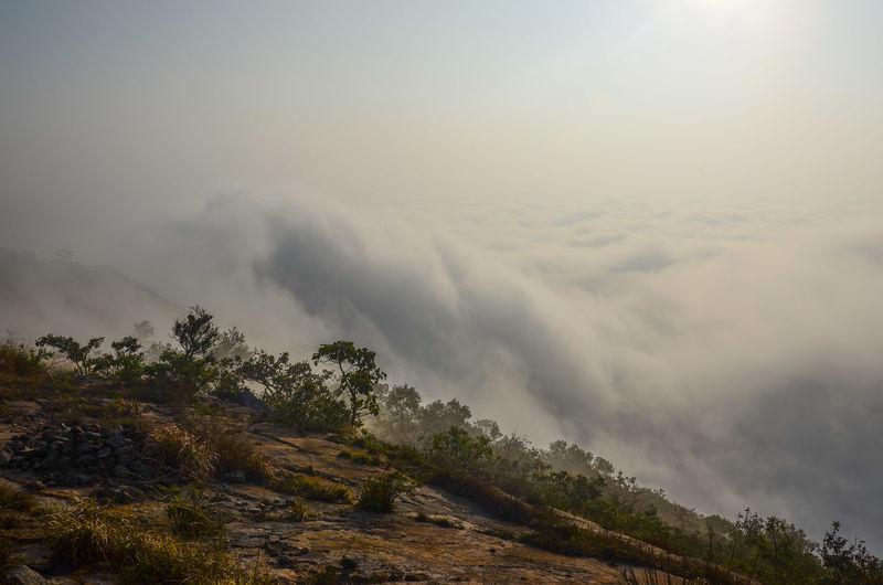 Cloud Forest Hill Morning Sky Trekking Lifeinclouds Feeling Spiritual