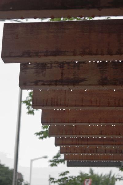 Raindrops Sensetive Eyedrops Low Angle View Rain Sorrowful Water Wet