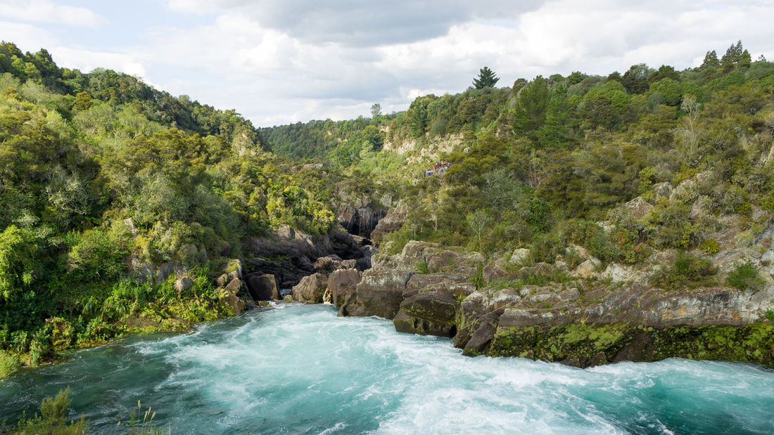 New Zealand Lake Taupo Green Water Landscape Nature Aratiatia Rapids Huka Falls Traveling Travel Destinations Rock - Object Natural Parkland No People Outdoors Tree Area Waterfall Day