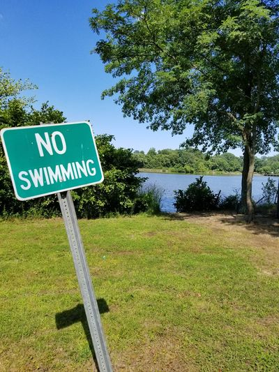 Tree Outdoors Guidance Water Grass New Jersey No People No Swimming