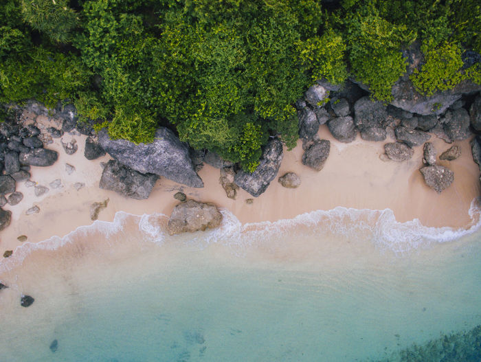 aerial view of a beach Aerial View Bali Beach Day Empty From Above  INDONESIA Nature No People Nobody Ocean Outdoors River S Scenics Sea Stones, Water, And Shrubbery Summer Tranquility Tree Water