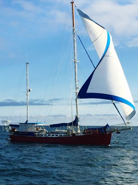 Like Ships In The Night Sail Away, Sail Away Blue Skies Deep Blue Sea Sails Up Ocean❤ White Sail Simple Things In Life Taking Photos Things I Saw Today Life In Colors Things I See Enjoying Life Having Fun Yatch No Clouds Awesome