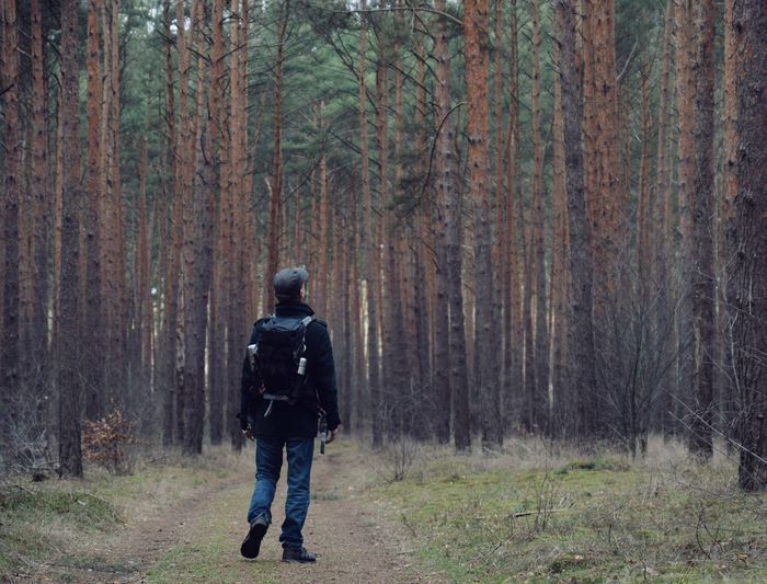 Rear view of backpacker walking in forest