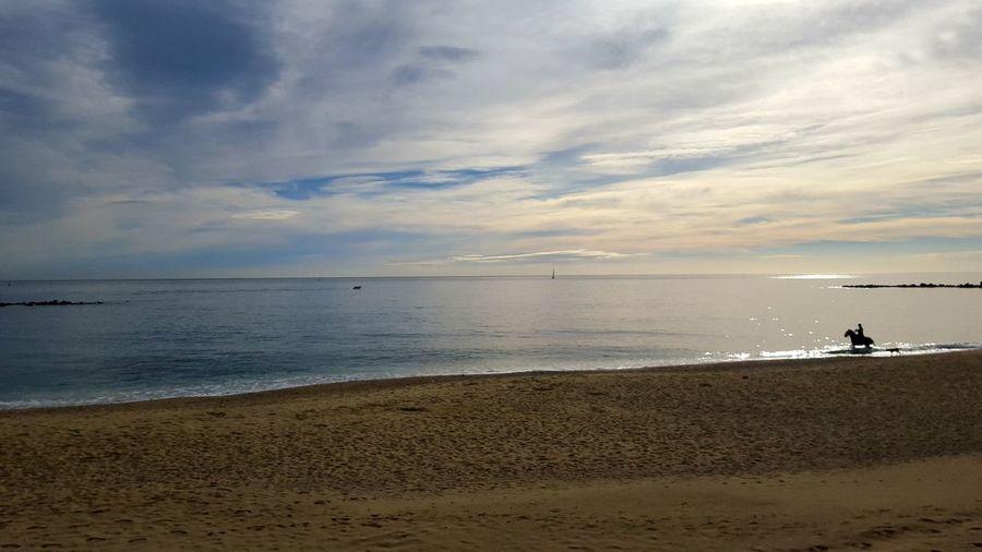 Sea Beach Horizon Over Water TranquilityPaisaje Caballo Horse