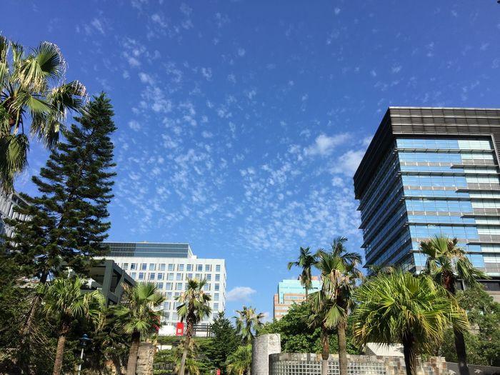 20150909,天氣之好,應該放假才對XD Taipei 101 信義區 台北市政府 松智路