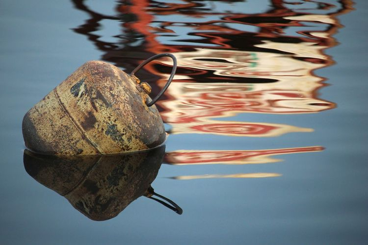 Water reflection. The marina use those burned propane tank to keep this area free of boats Color Photography Environment Summertime Water Reflections Water Surface Water Sea Life UnderSea Underwater Reflection Close-up