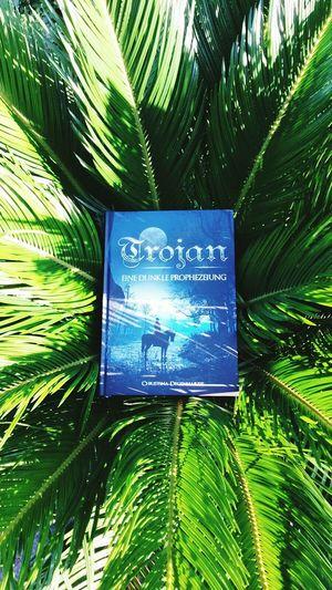 BookLovers Summerdream Trojan Trojan-eine Dunkle Prophezeiung Book Fantasy Good Story Palme Trojan-Prophezeiung.de Bücherfreunde Buch Bücherwürmer Bücherliebe Traum Erfüllt