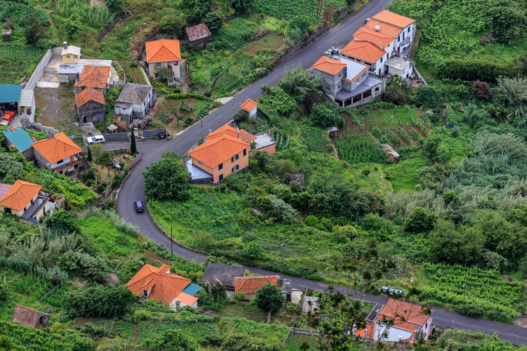 High angle view of houses amidst trees and buildings