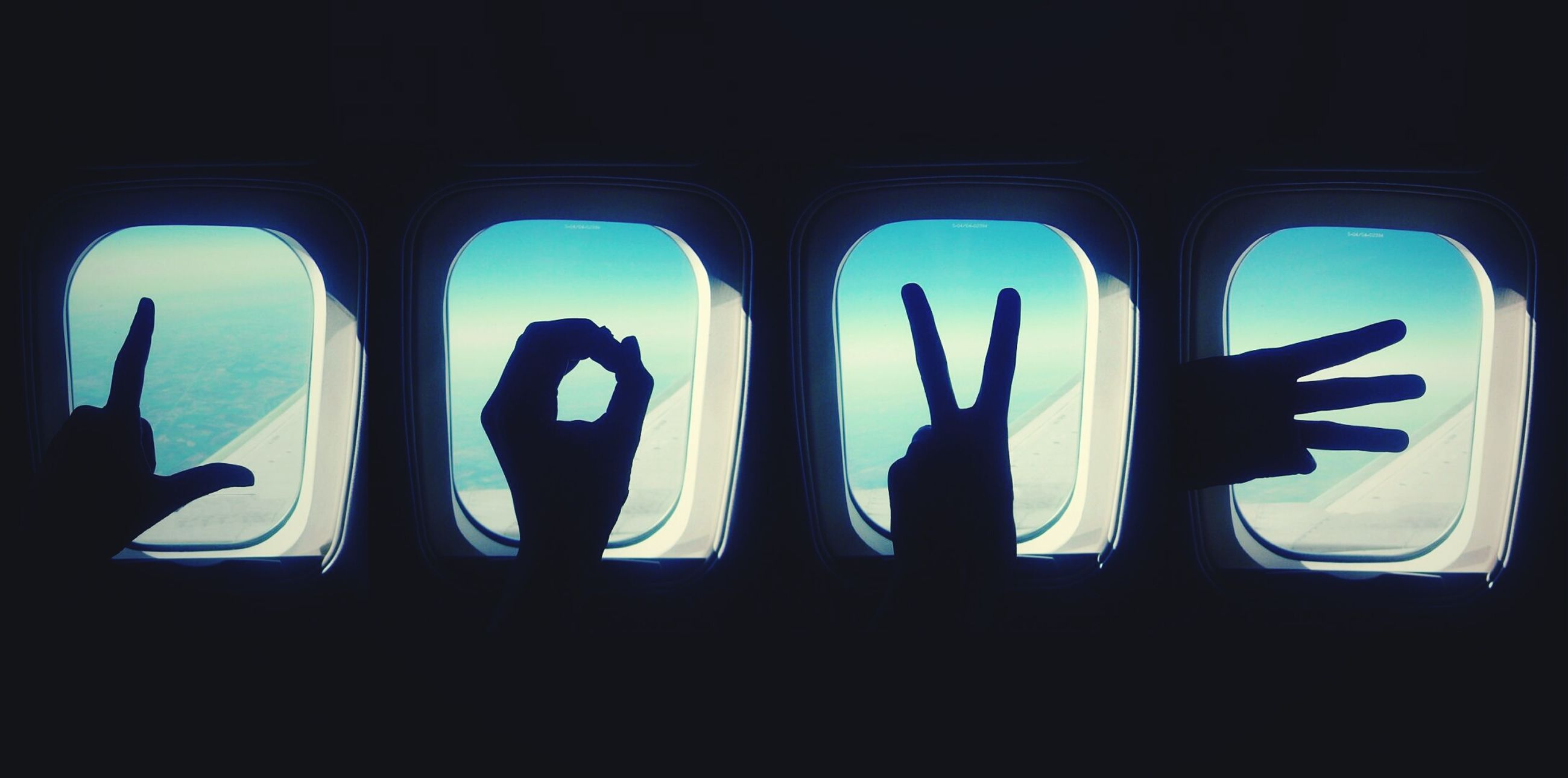 person, silhouette, unrecognizable person, window, lifestyles, cactus, gesturing, reaching, hand sign, blue, peace sign, sky, limb, human finger, exploration
