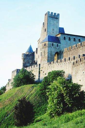 History Architecture Castle The Past Building Exterior Low Angle View Built Structure Day Ancient Tree No People Travel Destinations Outdoors Clear Sky Ancient Civilization Sky Nature Carcassonne France Carcassone, France Green Color Medieval Castles Fort