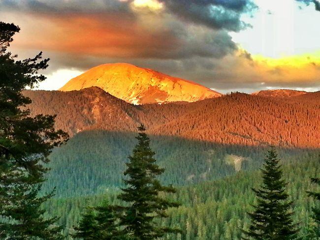 Ilgaz Mountain All Natural :)  Wheatherpro: Your Perfect Wheather Shot EyeEmBestPics Sunset #sun #clouds #skylovers #sky #nature #beautifulinnature #naturalbeauty #photography #landscape
