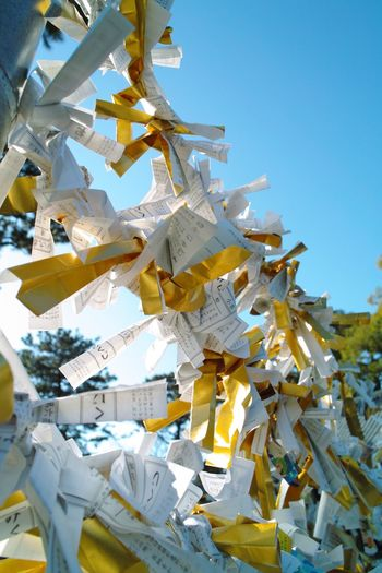 Low angle view of wishing papers on fence