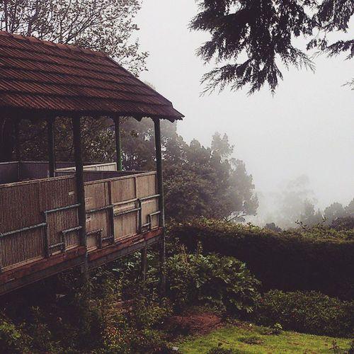 Stillviews Hills Mist Fog Wonderland Like Likealways Like4like Beautiful