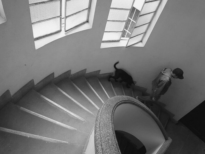 Embrace Urban Life Indoors  Spiral Staircase Spiral Staircase Steps And Staircases Architecture Pupet Rojo-injuria Parceros Yesideljach Paseo A La Mascota