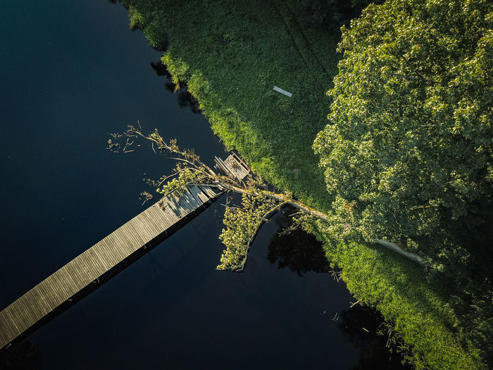 High Angle View Of Pier Over River In Forest