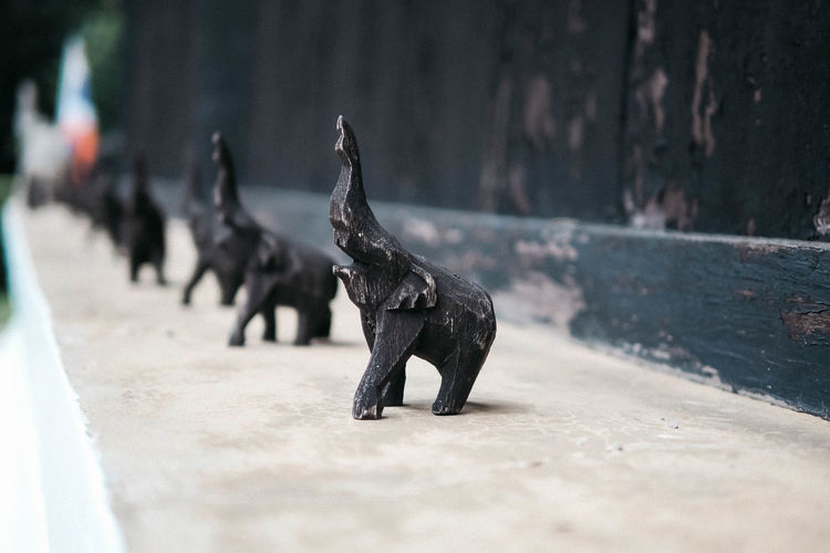 A group of elephant statue 🐘 Animal Themes Animal Group Of Animals Selective Focus Black Color Outdoors Mammal Large Group Of Animals Wood - Material Elephant Statue
